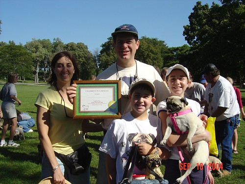 09-04 Pug Strut Emmy and certificate (3)