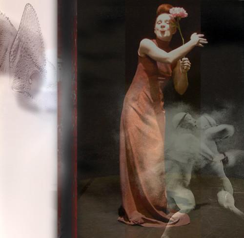 erasing chameleon by Viki Olner