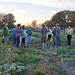 Richmond Incubator Farms