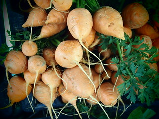 Artisan Carrots 1565
