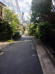 朝散歩 (2012/9/30)