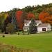 Colourful Backyard