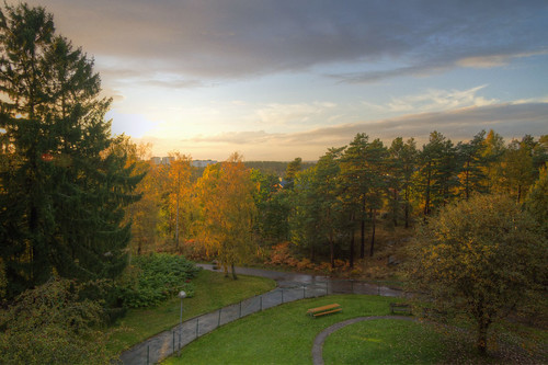 autumn trees fall leaves göteborg view sweden balcony foliage sverige hdr höst bergsjön canonefs1785mmf456isusm canoneos7d astronomgatan