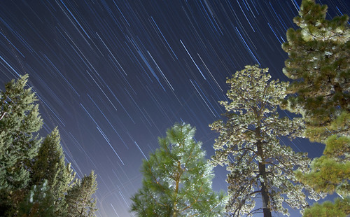 california bear longexposure trees sky lake holiday cali pine night stars star evening big trails slowshutter starry startrails bigbear