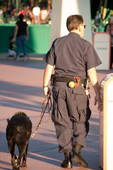 Disney Security is going to the dogs