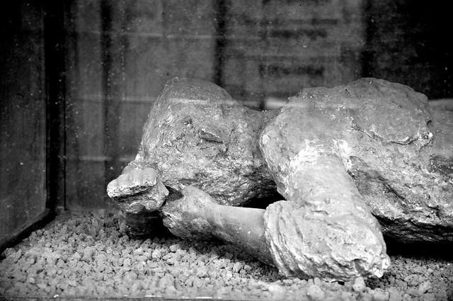 Body of Pompeii | Flickr - Photo Sharing!