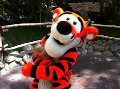 Hugging Tigger is much better than accidently being kicked over by Tigger.