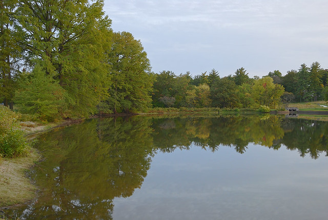 Shaw Nature Reserve (Arboretum), in Gray Summit, Missouri, USA - Pinetum Lake