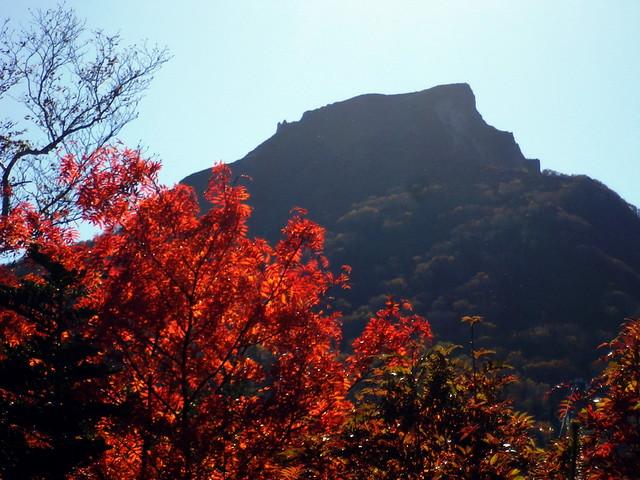 黒岳紅葉2