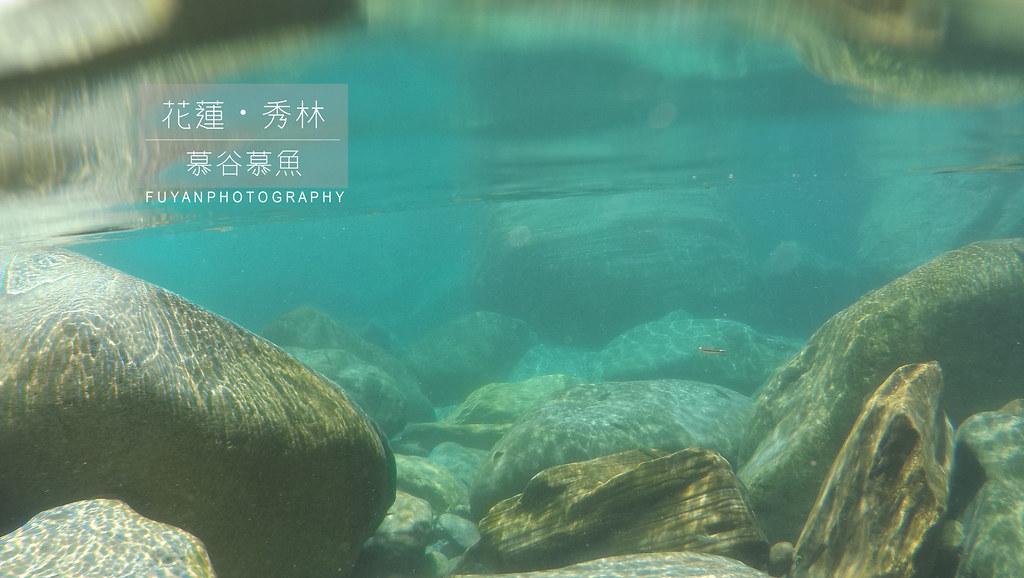 慕谷慕魚 (4)