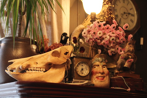 Skull, clock, and face cup display