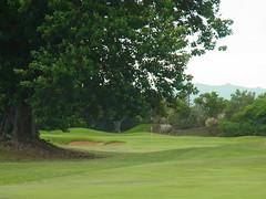 Kauai Lagoon Golf Club 442