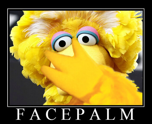 Big Bird Reacts to Obama's Latest