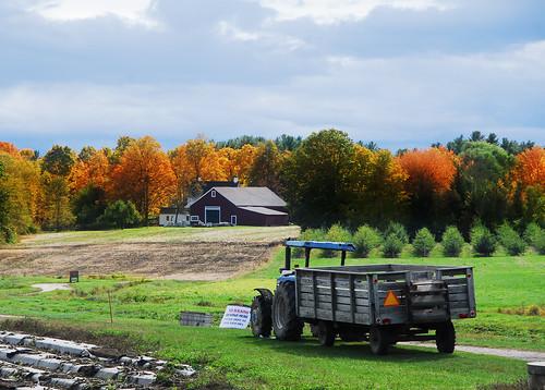 farm by nhpe1