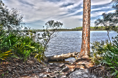 statepark usa water nikon wasser unitedstates florida hiking ngc hike trail hdr niceville choctawhatcheebay rockybayou okaloosacounty d5000 fisherbray fredgannon