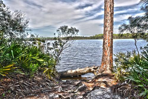 statepark usa water nikon wasser unitedstates florida hiking ngc hike trail hdr niceville choctawhatcheebay rockybayou okaloosacounty d5000 fisherbray fredgannon