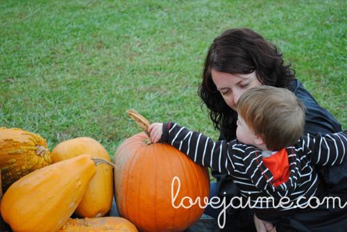 pumpkinpatch3