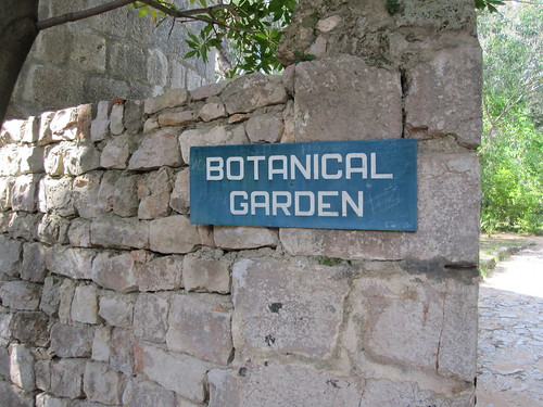 Botanical garden in Lokrum by Anna Amnell