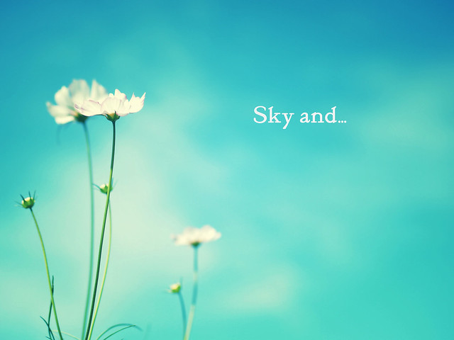 空と・・・