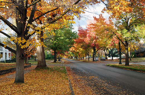 Boise (by: RoadsidePictures, creative commons)