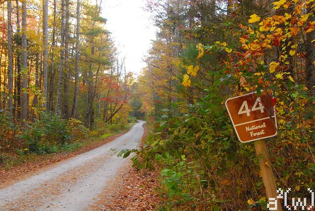 Fall drive 2012-16