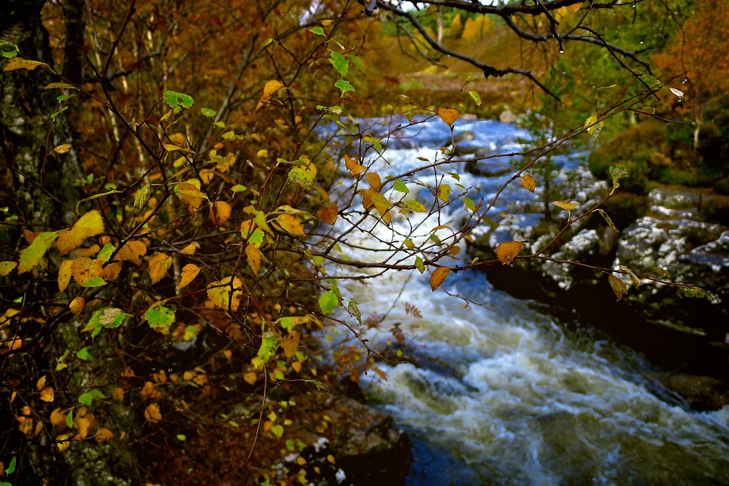 Quoich Water in Autumn