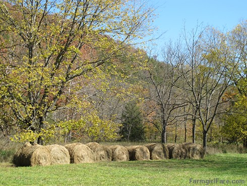 (24-3) This was our first year putting up round bales of hay. We didn't get many, but it's better than none - FarmgirlFare.com