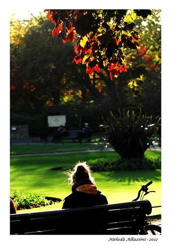 Dublin Autumn 5