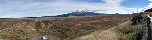 Mt Ruapehu from Desert Rd.