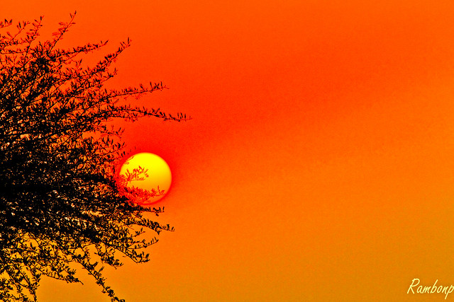 Today's sunset in Chandigarh !!!