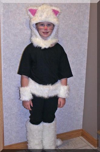 Halloween 2012 - Cat 2