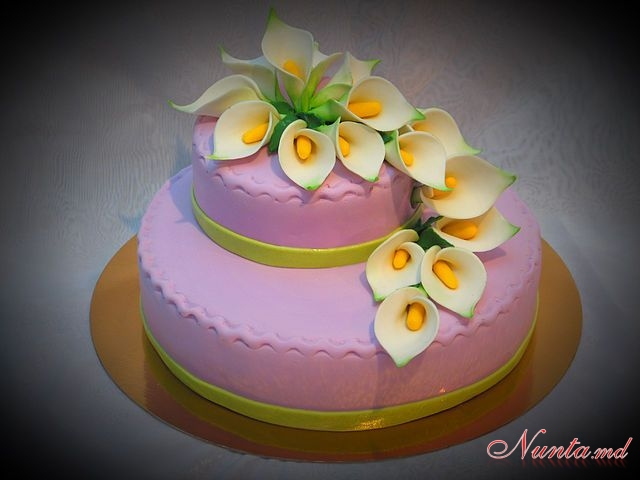 ''Plaisir''. > Фото из галереи `Varietate de torte`