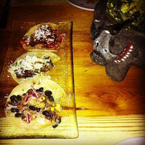 A trio of tasty tacos.
