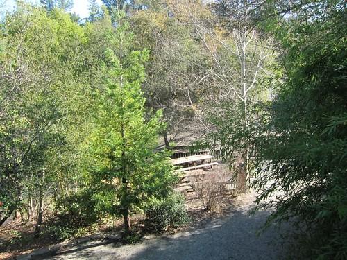 Hakone Japanese Gardens, Saratoga, CA IMG_2322