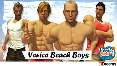 venicebeachboys_684x384