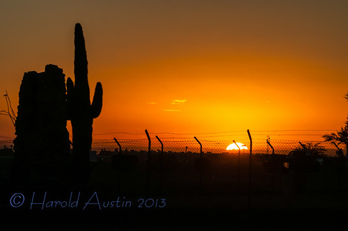 sunset arizona usa landscape desert dec yuma 2012 saguarocactus nikon7003000mmf4556