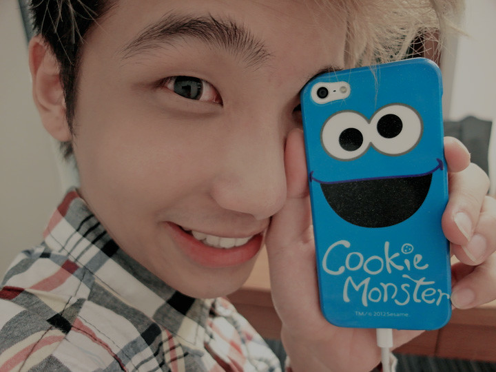 typicalben with cookie monster iphone 5 cover