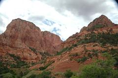 Navajo Sandstone (Lower Jurassic), Paria Point, Kolob Canyons, Zion National Park, sw Utah 9