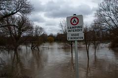 La Moselle - Promenade du Quai Paul Wiltzer - Risque d'inondation