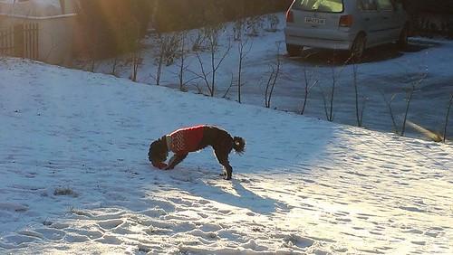Guri i snøen