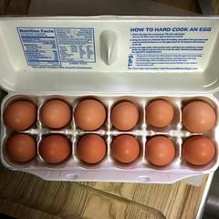 Local Eggs!