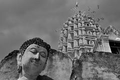 Buddha's kindness