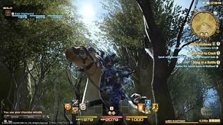 Final Fantasy XIV on PS3