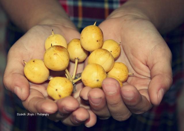 En sus manos...