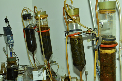 The consortium is experimenting with biogas production from different organic wastes