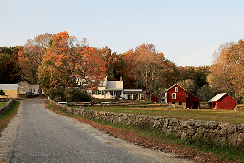Horse farm, fall, northern Rhode Island by print57