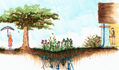 section rendering of green infrastructure (by: Shengnan An, courtesy of UC Davis)