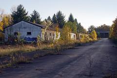 Overgrown village