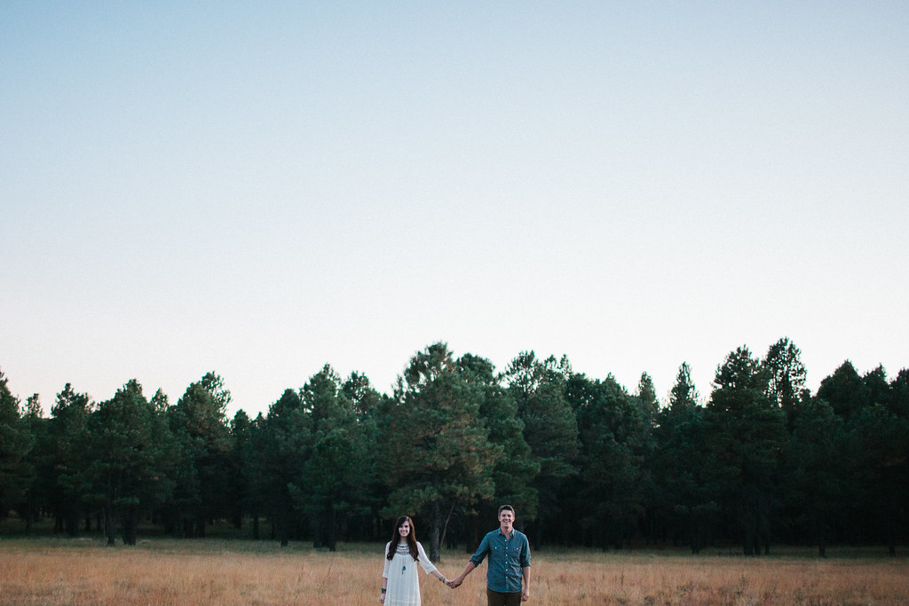 NickClaireEngagements2012-71