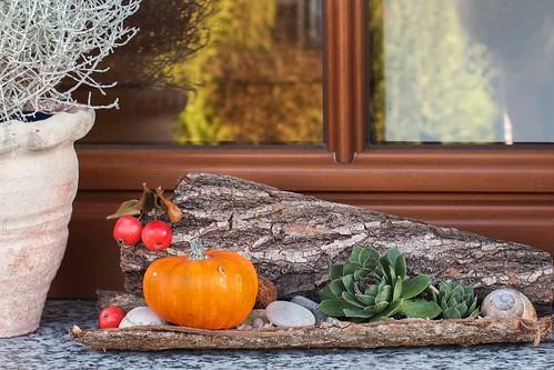 Herbstliches für die Fensterbank  Gartenzauns Blog